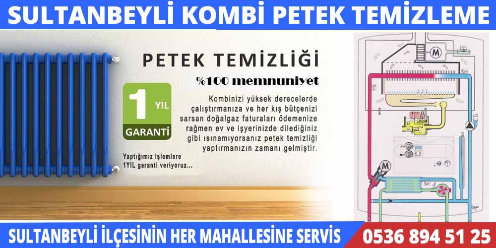 sultanbeyli-petek-temizleme