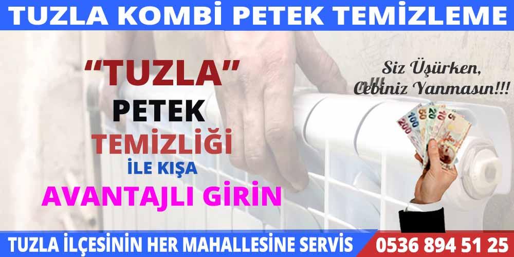 tuzla-petek-temizleme