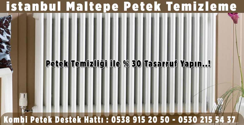 istanbul-maltepe-petek-temizleme