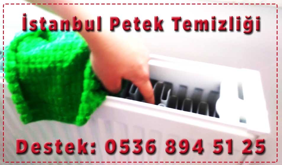 istanbul-petek-temizleme