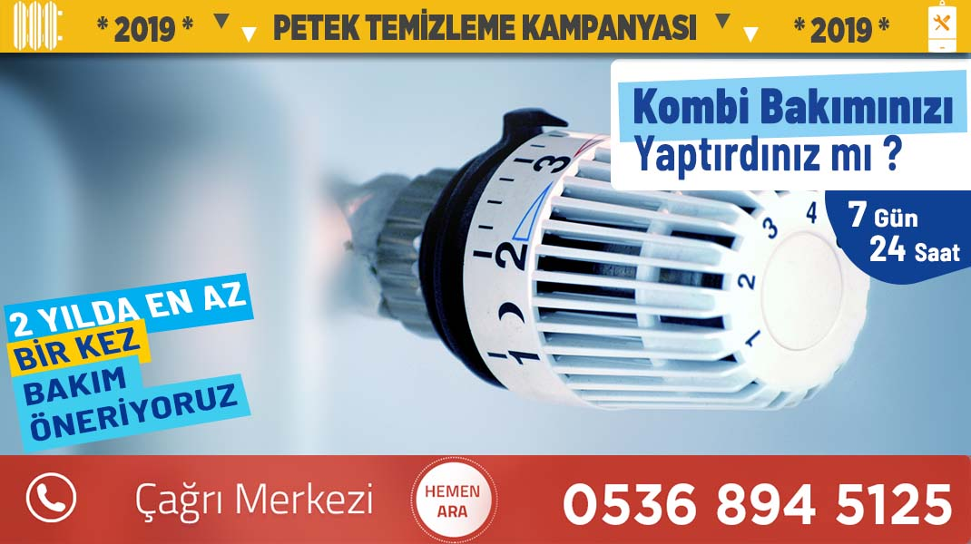 petek-temizleme-istanbul